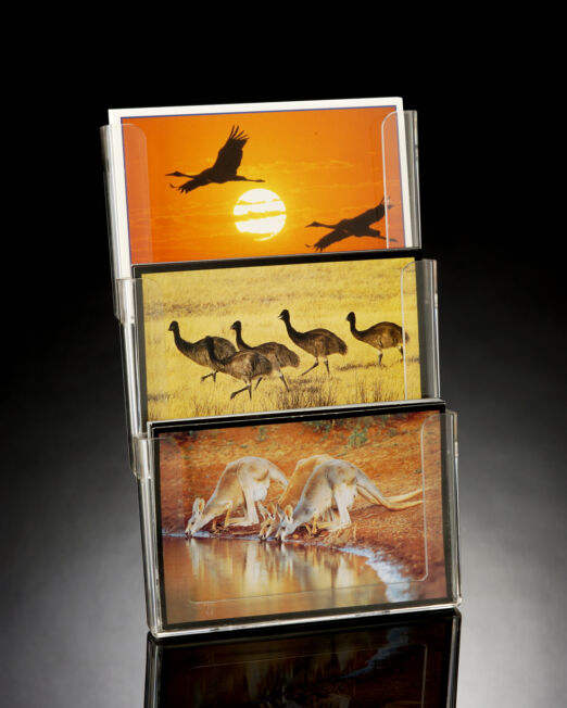 CT3HP Triple Greeting Card Display with Base Bracket-507